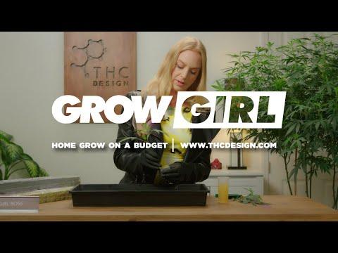 grow on a budget