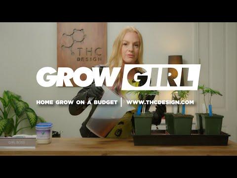 home grow on a budget