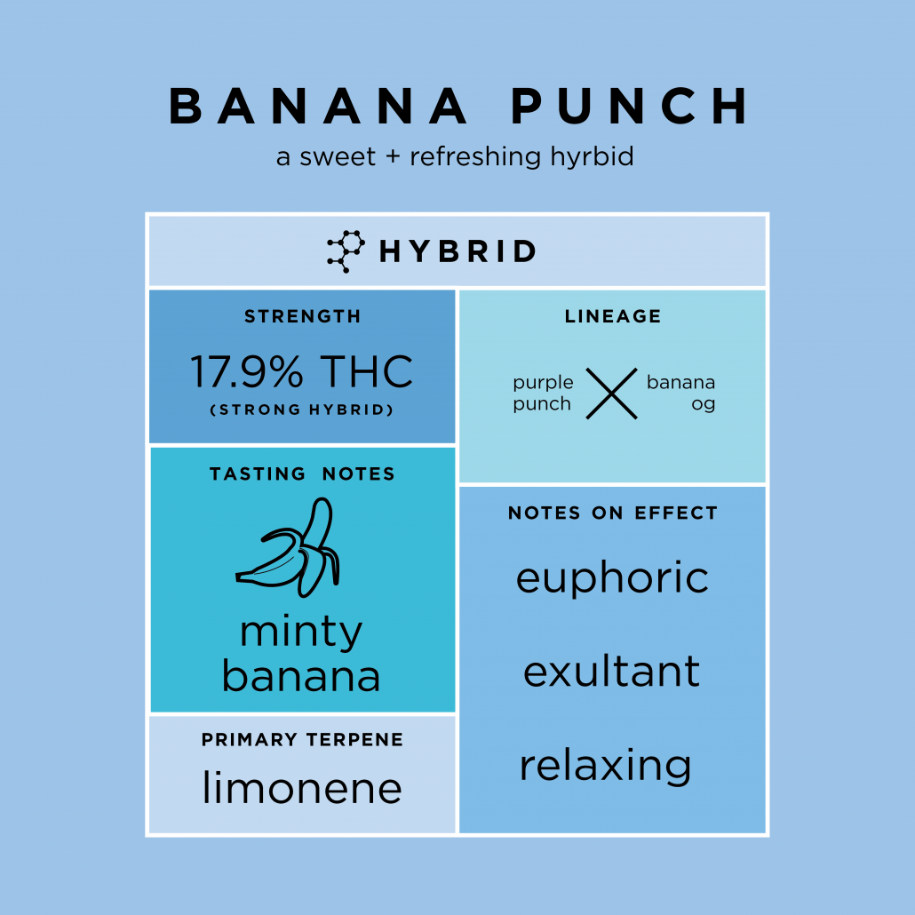 Banana Punch - Cannabis Strains - THC Design Cannabis
